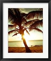 Framed Bimini Sunset I