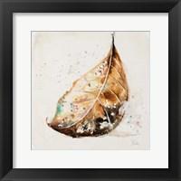 Framed Global Leaves II