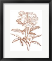 Framed Etched Metallic Floral I