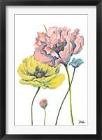 Fresh Colored Poppies I Framed Print