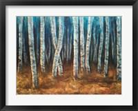 Framed Moonlit Birchwood