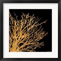 Coastal Coral on Black II Framed Print