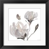Framed Gray Tonal Magnolias I