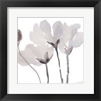 Framed Gray Tonal Magnolias II