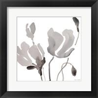 Framed Gray Tonal Magnolias III