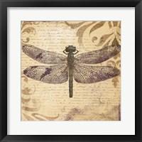 Framed Dragonfly