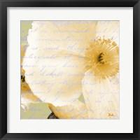 Written in the Wind II Framed Print