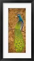 Framed Peacocks I