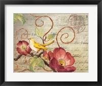 Avian Postcard I Framed Print