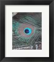 Enchanted Feather I Framed Print