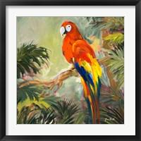 Framed Parrots at Bay I