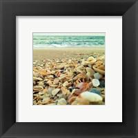 Framed Shells Beach I