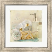 Framed Silver Bath II