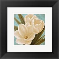 Blue Morning Tulips I Framed Print