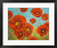 Framed Field of Poppies I