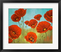 Framed Field of Poppies II
