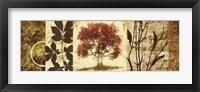 Framed Red Tree Panel I