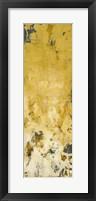 Pathside Perennials II Framed Print