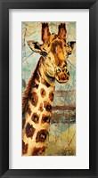 Framed New Safari on Teal I