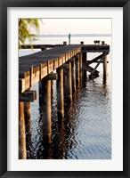 Framed Waterside Beauty II
