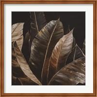Framed Through the Sepia Leaves I