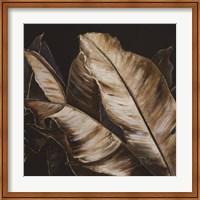 Framed Through the Sepia Leaves II