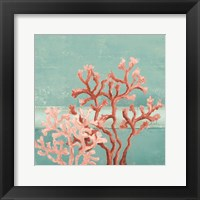 Framed Teal Coral Reef II