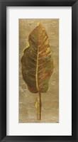 Arte Verde on Gold I Framed Print