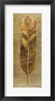 Arte Verde on Gold II Framed Print