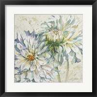 Framed White Dahlias I