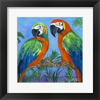 Island Birds Square I Framed Print