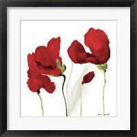 Framed All Red Poppies II