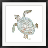 Framed Neutral Turtle II