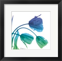 Framed Tulips L83 Turq Blue