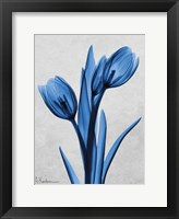 Framed Midnight Tulips Panel
