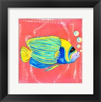 Framed Beach Front Fish