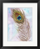 Framed Peacocl Feather 2