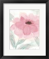 Blush Peony II Framed Print