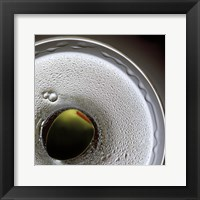 Framed Birds Eye Martini