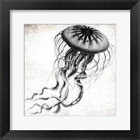 Framed Jellyfish Ink