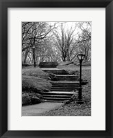 Framed Central Park Stairs To Nowhere