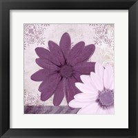 Framed Purple Bloom 2