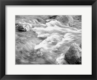 Framed In Motion BW 2B