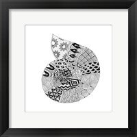 Framed BW Decorated Nautilus