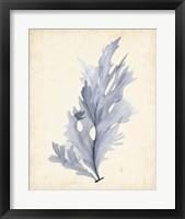 Framed Watercolor Sea Grass VI