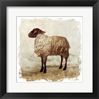 Framed Rustic Sheep