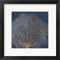 Gold Coral II Framed Print