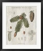 Framed Woodland Chart V
