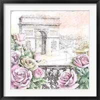 Framed Paris Roses V