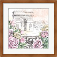 Framed Paris Roses V
